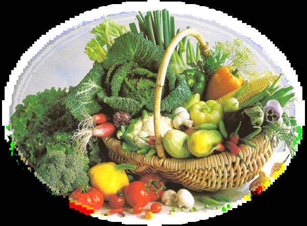 Tube Légumes